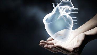 Sommes-nous en manque de donneurs d'organes ?