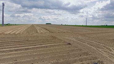 L'extension du zoning de Perwez, au détriment des terres agricoles?