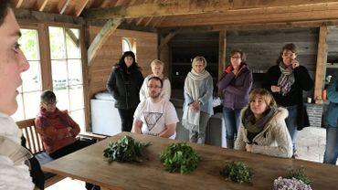 Rhines: la première édition du festival des plantes sauvages attire la foule
