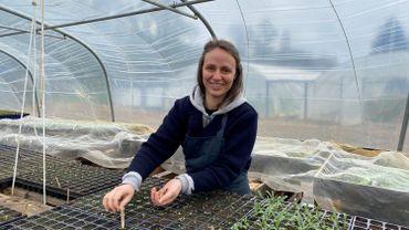 Annemie Knaepen termine ses semis de cosmos, bluets sous serre, avant de les replanter sur un terrain de 15 ares