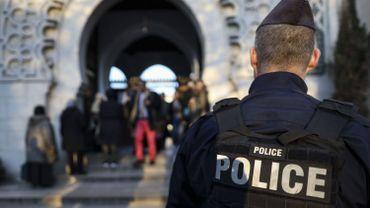 France: une tête de cochon trouvée sur le chantier d'une future mosquée
