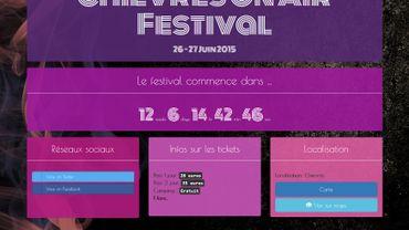 Déjà un site internet pour un festival qui vient d'être annoncé, mais une programmation encore en discussion