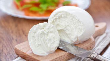 Bufflonne de Campanie ou vache des Pouilles: guerre des mozzarella en Italie