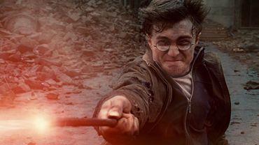 'Harry Potter & Les Reliques de la Mort Partie 2'