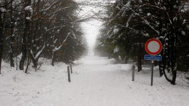 Les pistes du Signal de Botrange (photo) seront, elles, accessibles dès mercredi.