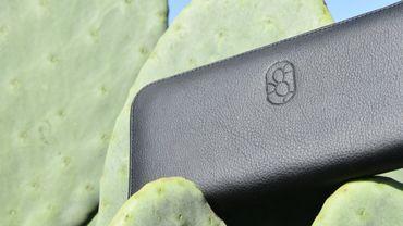 Un nouveau cuir vegan à partir de cactus produit au Mexique