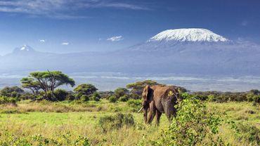 Vacances d'hiver : les réservations pour la Tanzanie sont en hausse de 27%.