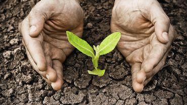 5 gestes pour préserver notre planète
