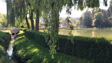 La pollution a notamment touché le Coeurcq, à Tubize, et les étangs qu'il alimente.