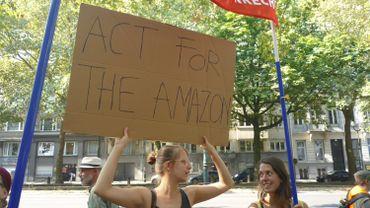 Agir pour l'Amazonie passera peut-être bientôt par le boycott du cuir brésilien.