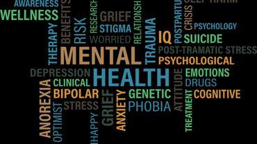 Les médecins bruxellois ouvrent un débat sur la santé mentale avec un livre blanc