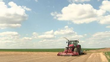 Subsides en baisse: les agriculteurs accusent le coup
