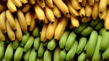 Commerce équitable: opération banane à la gare des Guillemins