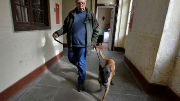 Thor, un malinois acquis par l'Institut Curie pour le projet Kdog en compagnie de son maître Patrick Mairet, expert cynophile, le 12 octobre 2016 à Magnac-Laval dans une caserne militaire désaffectée