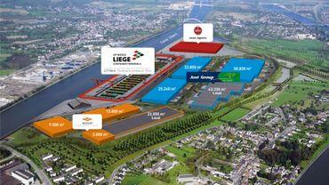 La société Weerts Supply Chain va investir plus de 50 millions d'euros au trilogiport