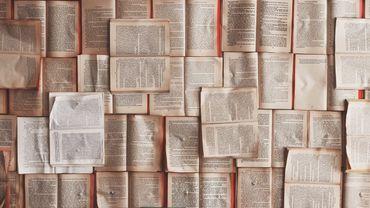 Flandre: la vente de livres baisse, les librairies indépendantes revivent