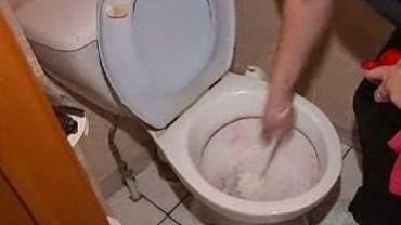 Une région suédoise étudie une proposition obligeant les hommes à uriner assis