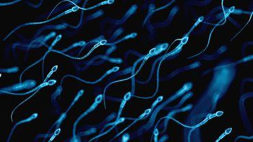 Les fausses couches à répétition peuvent être liées à des spermatozoïdes endommagés