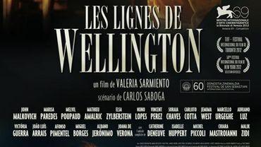 'Les lignes de Wellington'