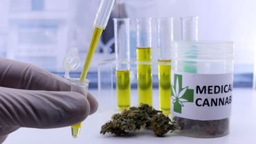 Le cannabis thérapeutique pourrait réduire la consommation d'opioïdes aux Etats-Unis.