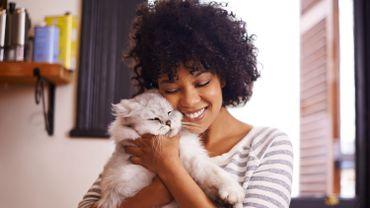Pour être plus épanoui, inspirez-vous de votre chat