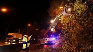 Les pompiers dégagent un arbre tombé sur une route à Hal