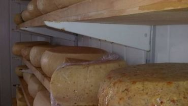 Le fromage au lait cru compte de plus en plus de producteurs