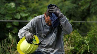 Un employé de l'Autorité publique de l'énergie électrique (AEE) travaille dans la chaleur de Porto Rico le 29 novembre 2017