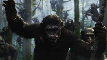 Le fan qui remportera le concours jouera un singe aux côtés d'Andy Serkis qui incarne César.