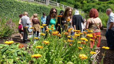 le jardin médiéval de Villers-la-Ville