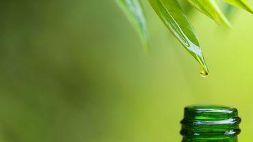 Concours : gagnez le fluide énergisant Oxygen Drops d'Annayake