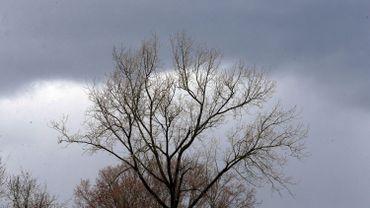 Une impression plus grise qu'hier mais un temps sec