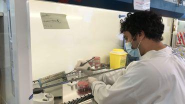 Le laboratoire de microbiologie du centre hospitalier universitaire du Sart-Tilman