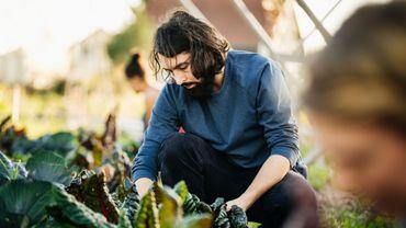 Ces 3 applis feront de vous le meilleur jardinier de votre quartier.