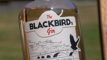 Blackbird's Gin