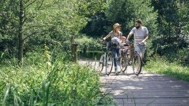 La balade des Poiriers, une balade à vélo au départ de Visé
