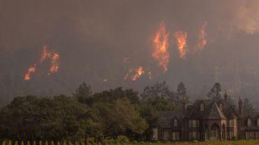 Un incendie près de Ledson Winery à Kenwood près de Santa Rosa en californie le 14 octobre 2017