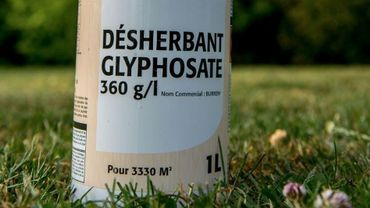 Du glyphosate a bien été pulvérisé sur le terrain de football de l'Entente Stembertoise (illustration)