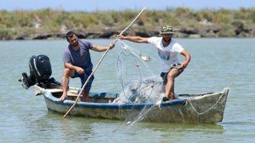 Adrian Kola, un pêcheur, retire des crabes bleus de son filet sur la rivière du village d'Adriatik, près du lagon de Divjakë en Albanie le 24 juillet 2020.