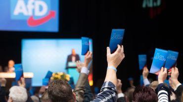 """Allemagne: vers un """"changement de génération"""" à la tête de l'extrême droite"""