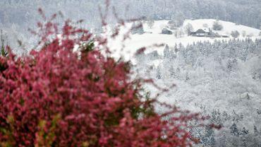 Neige dans la campagne près de Salzbourg, en Autriche, le 19 avril