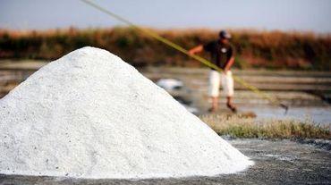 Production de sel à Guérande, en France