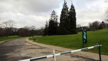 Attention aux rafales vent! Les parcs bruxellois seront fermés au public ce soir