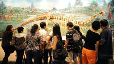 Un fossile de Lufengosaurus au musée des Sciences de Hong Kong, le 26 octobre 2008