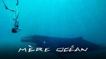 Mother Ocean, une grossesse au milieu des dauphins