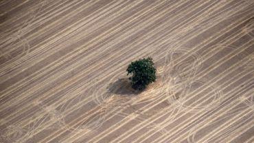 Les États membres peuvent compenser jusqu'à 80% -jusqu'à 90% dans certaines régions- des dommages causés par la sécheresse, sans que la Commission n'en soit informée.