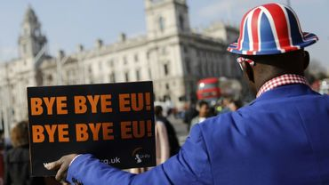 Un militant pro-Brexit manifeste devant le Parlement à Londres, le 28 mars 2019