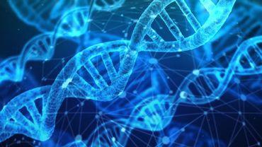 Un test pour dépister 1200 maladies génétiques disponible dès le mois d'octobre