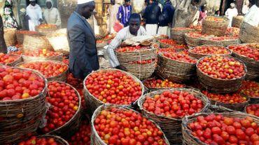 Le Dossier éco de Matin Première - L'investissement en Afrique