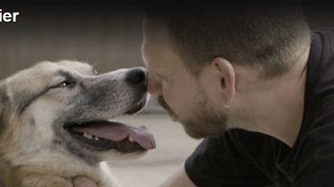 4 chiens maltraités saisis chez la fille de Claude Barzotti